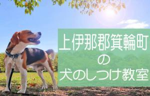 上伊那郡箕輪町の犬のしつけ教室|おすすめのドッグスクールはココです!