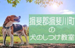 揖斐郡揖斐川町の犬のしつけ教室 おすすめのドッグスクールはココです!